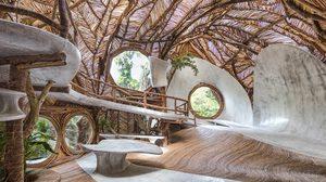 ดื่มด่ำธรรมชาติ บ้านต้นไม้ อาร์ตแกลอรี่ โครงสร้างเด็ดแค่ไหน? ต้องดู!