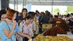 """แห่ กินผลไม้ฟรี ในงาน """"ของดีเมืองจันท์ วันผลไม้ สีสันตะวันออก"""" 23-31 พ.ค.58"""