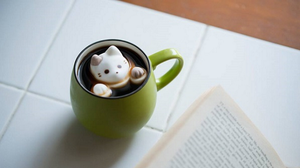 23 Cutest Marshmallow Cats You Might not Want To Eat