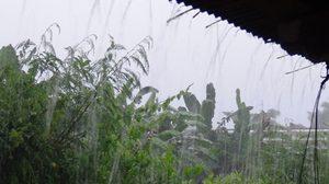 อุตุฯ ชี้ไทยมีฝนชุก เหนือ-อีสาน ตอ.ใต้ตกหนักหลายพื้นที่