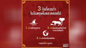 ตรุษจีนปีนี้ ชวนคนไทย งดซด 'หูฉลาม' เลิกซื้อของสัตว์ป่า