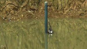 เฝ้าระวัง! แม่น้ำมูลลดฮวบต่อเนื่อง 3 อำเภอในบุรีรัมย์เสี่ยงแล้ง