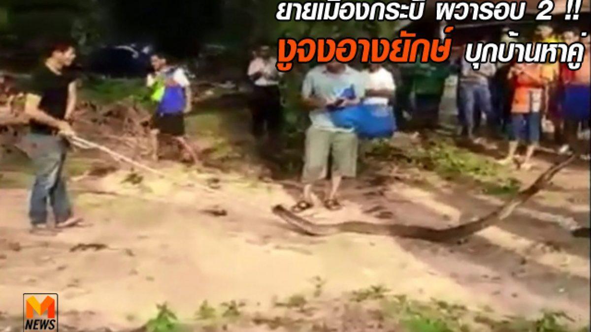 กู้ภัย รุดช่วยยายวัย 83 หลังงูจงอางยักษ์บุกบ้าน