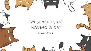 มันใช่เลย! 21 เรื่องแมวๆ ที่คนเลี้ยงโดนประจำ