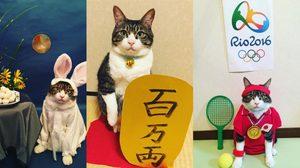 แมวคอสเพลย์สอนญี่ปุ่น สุดตะมุตะมิ น่ารักสุดๆ ทาสแมวห้ามพลาด