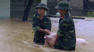 ดีเปรสชันถล่มเวียดนาม น้ำท่วมสาหัส เสียชีวิตแล้ว 37 ศพ