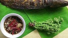 สูตร สะเดาน้ำปลาหวาน กับปลาดุกย่าง มื้อแซ่บที่ไม่ควรพลาด