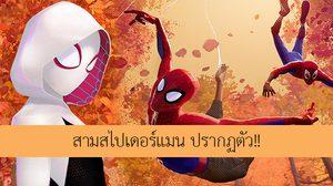 เกวน สเตซี ไงจะใครล่ะ!! สามมนุษย์แมงมุม ปรากฏตัว ในตัวอย่างล่าสุด Spider-Man: Into the Spider-Verse