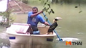 เผยสภาพสวนสัตว์ฯ เมืองคอนจระเข้ 4 ตัวตาย 1 ตัว