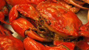 ขอเชิญเที่ยวงาน เทศกาลอาหารทะเล จังหวัดสมุทรสาคร ครั้งที่ 13