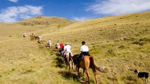 อุทยานแห่งชาติ Yellowstone ดินแดนหลากธรรมชาติ