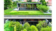เขียวกระแทกตา! บ้านแฝดสองชั้น กับพื้นที่ปอดส่วนตัว ตามหลักจัดสวน แบบจีนโบราณ