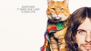 ประกาศผล : ดูหนังใหม่ รอบพิเศษ A Street Cat Named Bob บ๊อบ แมว เพื่อน คน