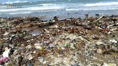 ตะลึง! กองขยะมหึมา ลอยเกยหาดในวนอุทยานปราณบุรี