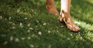 สลัดรองเท้าทิ้ง รับธรรมชาติเข้าร่างกายกัน !