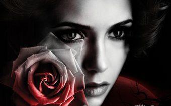 The Vampire Diaries บันทึกรัก ฝังเขี้ยว ปี 3