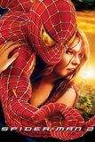 Spider-Man 2 ไอ้แมงมุม 2