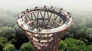 """เที่ยวป่าเดนมาร์ก """"Treetop walkway"""" ชมธรรมชาติสุดอลัง 360 องศา"""