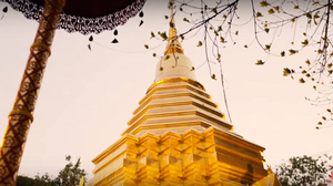 8 Recommended Night Tours in Chiang Mai