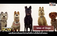 Isles of dogs