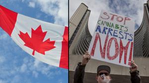 สายเขียวถึงกับเฮ ร่างกฎหมายแคนาดาไฟเขียว กัญชาถูกกฎหมาย ปลูกได้ ขายได้สบายๆ