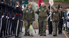 5 เรื่องความสามารถเด็ดๆ ของเพนกวินจากทั่วโลก ที่คุณรู้แล้วจะต้องทึ่ง!
