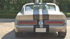 ดีเจเพชรจ้า กับรถในตำนาน Ford Shelby Cobra  GT 500