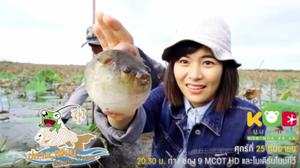 """ปลาตะเพียน!? """"กบนอกกะลา"""" พาไปดูปลาธรรมดาที่ไม่ธรรมดา"""