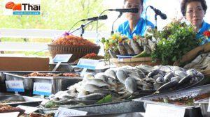 ชวนกินเที่ยว เทศกาลปลาทูอร่อยที่ท่าฉลอม ครั้งที่ 6