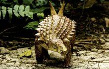 พบไดโนเสาร์สายพันธุ์เก่าแก่สุดในเม็กซิโก