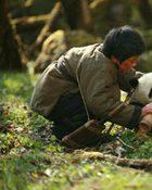 Trail of The Panda: แพนด้าเพื่อนรัก