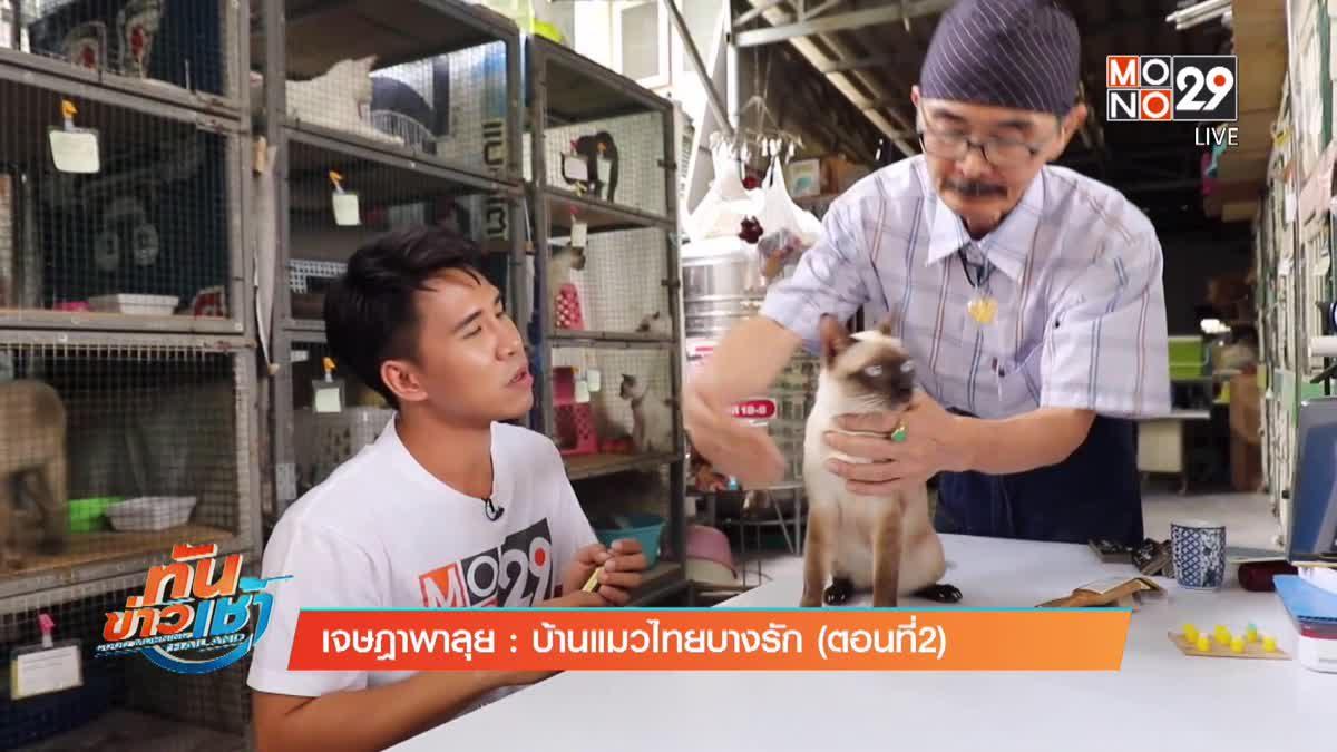 เจษฎาพาลุย : บ้านแมวไทยบางรัก (ตอนที่ 2)