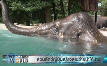 สวนสัตว์ญี่ปุ่นสร้างสระว่ายน้ำให้ช้าง