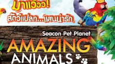 ชวนสัมผัสโลกแห่งสัตว์แปลก แสนน่ารัก ที่ซีคอนสแควร์