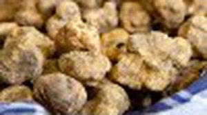 เทศกาลเมนูเห็ดทรัฟเฟิลขาว ส่งตรงจากอิตาลี ห้องอาหารอิตาเลียนลูเช่