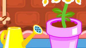เกมส์ปลูกผัก เกมส์ปลูกดอกไม้