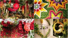 บานสะพรั่ง!! สาวๆ แห่ถ่ายเซลฟี่คึกคัก ดอกไม้นานาพรรณนับล้านดอก ณ ห้างเซ็นทรัล