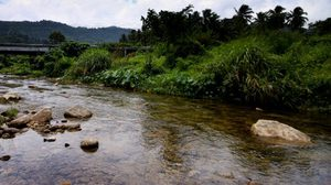 เที่ยวลานสกา ณ หมู่บ้านคีรีวง สัมผัสอากาศดีที่สุดในไทย