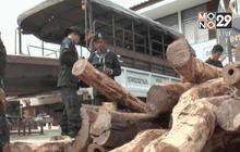 สกัดจับขนไม้พะยูงส่งขายประเทศเพื่อนบ้าน