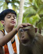 กะปิ ลิงจ๋อไม่หลอกจ้าว
