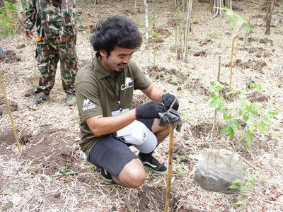 """ภาพบรรยากาศกิจกรรม MThai คลิกดี ทำดี ครั้งที่ 6/2557  """"ปลูกป่าให้ช้าง สร้างฝายชะลอน้ำ"""""""