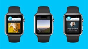 Instagram เป็นรายล่าสุดที่ถูกถอดแอปออกจาก Apple Watch