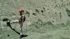 ประหลาด! รอยเท้าไดโนเสาร์ ไต่กำแพง