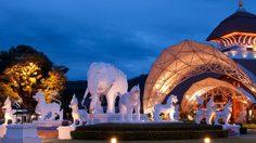 เชียงใหม่ ไนท์ซาฟารี คืนมหัศจรรย์ ในสวนสัตว์เมืองล้านนา