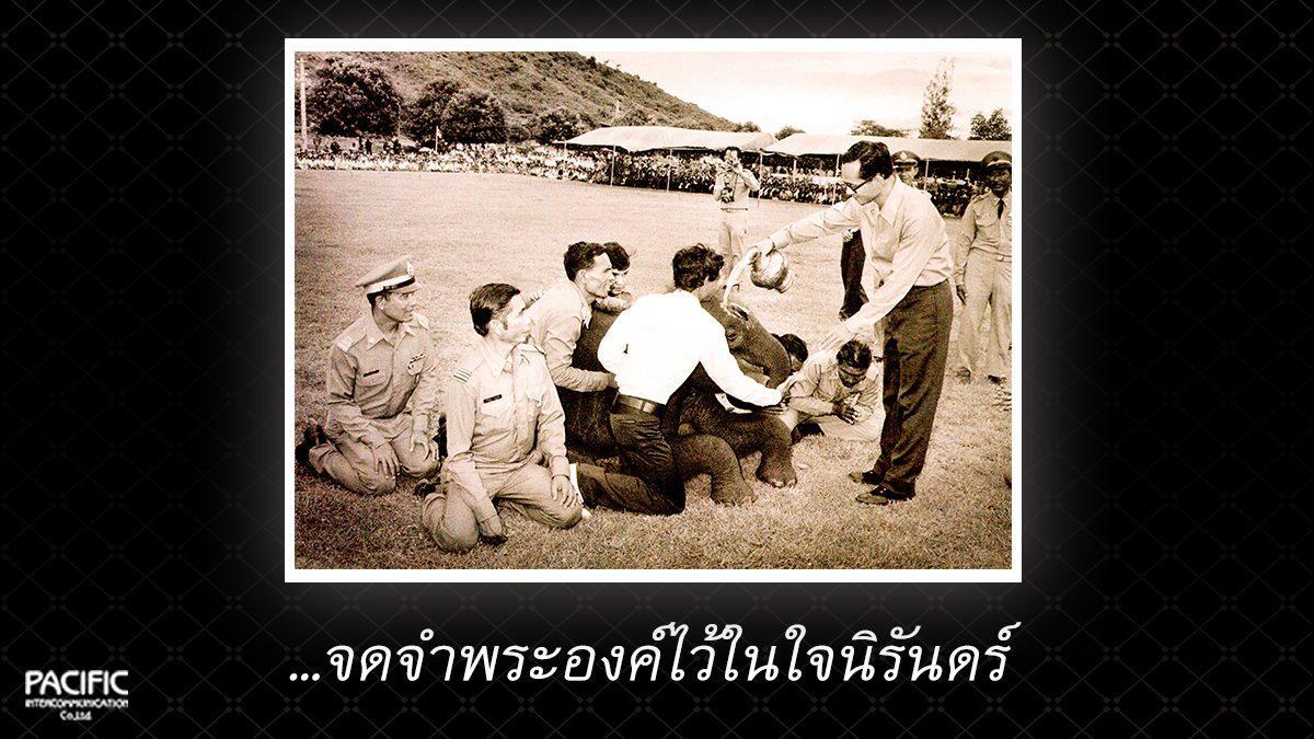 39 วัน ก่อนการกราบลา - บันทึกไทยบันทึกพระชนชีพ
