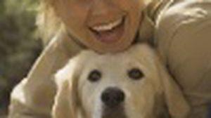 12 เหตุผลที่ หมาดีกว่าผู้ชาย หรือ ผู้ชายเลวกว่าหมา