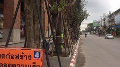 วิจารณ์แซด โรงแรมหรูเชียงใหม่ ปลูกต้นไม้ใหญ่บนทางเท้า !!!