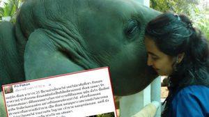 """สัตวแพทย์ แฉ """"มูลนิธิเพื่อนช้าง"""" ไม่เคยช่วยช้างเร่รอน ขอให้พูดเรื่องจริง!!"""