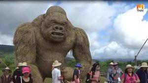 ฮือฮา! หุ่นฟางคิงคองยักษ์ จุดเช็คอินแห่งใหม่ของนักท่องเที่ยว