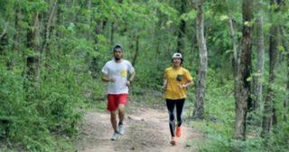 13 กันยายนนี้ ชวนคนที่มีหัวใจรักผืนป่ามาร่วมกิจกรรม 'วิ่งเพื่อสืบ'